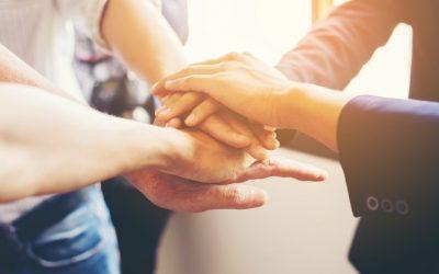 Building Rapid Trust: Assess & Verify